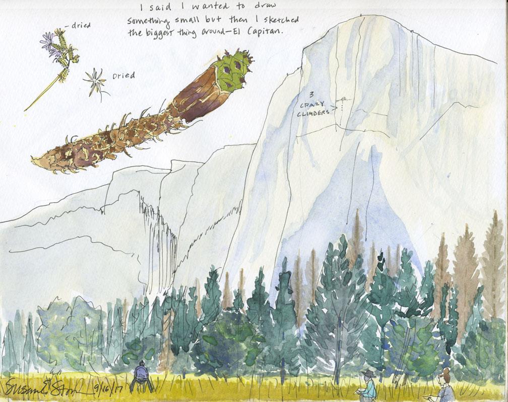 Yosemite1